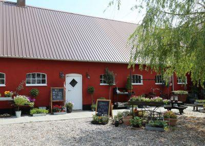 Vaeksthuset-Logstor-Blomsteriet06